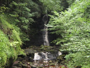 Mill Gill Water Fall, 3/4 mile walk from Askrigg though it is walkable from High Blean B&B Semer Water
