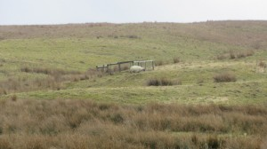 Private Water supply for High Blean B&B Askrigg, Yorkshire Dales