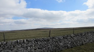 Buckden Pike in the distance.
