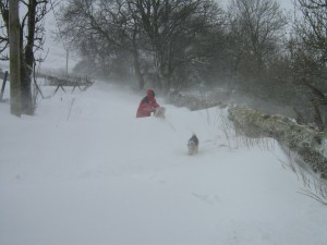 Snow drifts on the road to High Blean B&B Bainbridge