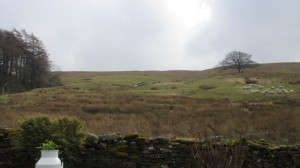 Private water supply tanks in the field opposite High Blean B&B, Askrigg, Yorkshire Dales